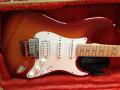 Fender Stratocaster Sambora Signature_3